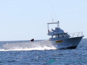 Cruel Sea - Lobster boat design