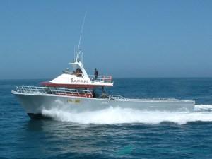 Safari - lobster fishing boat