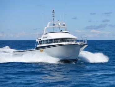 Gambler Starboard Bow Horizontal