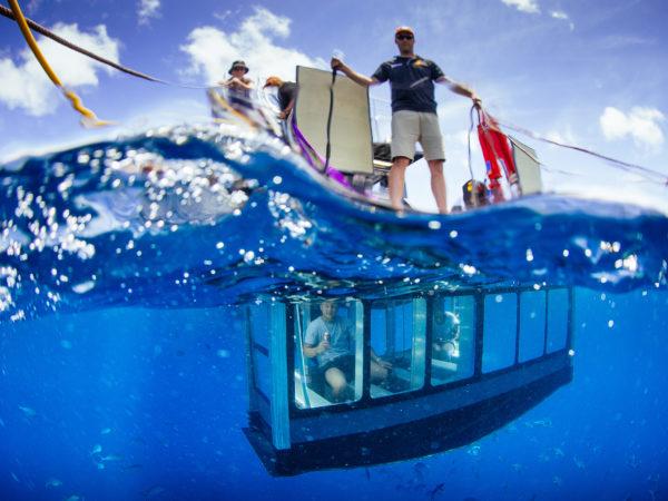 Underwater Viewing Platform